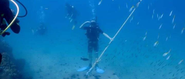 Brotherlouis aka Louis Jansen duiken in Thailand