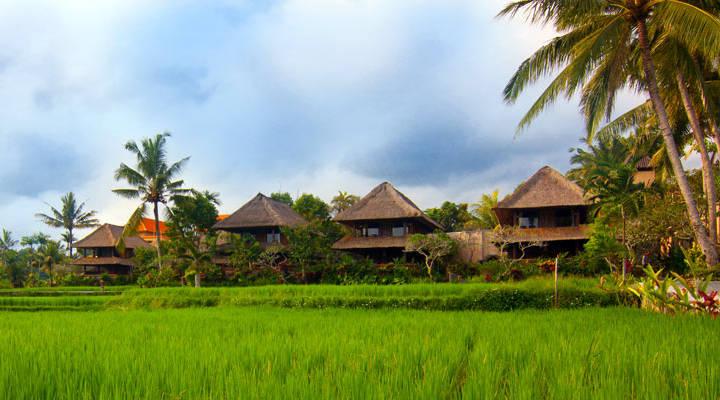 Guesthouse Ubud Hotel Bali resort homestay