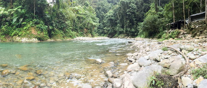 Sumatra Bukit Lawang camp site trekking