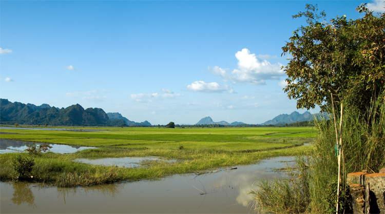 Rijstvelden bij Hpa-An in Myanmar