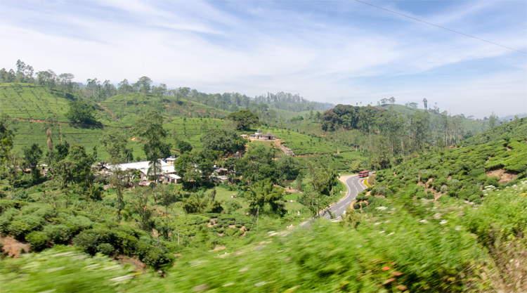 Treinreis van Ella naar Kandi in Sri Lanka