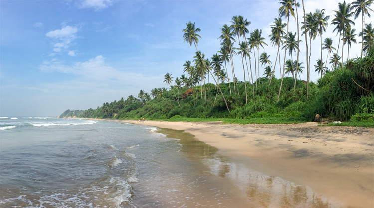 Reistips Meddawatta backpacken Sri Lanka