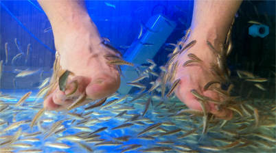 Voeten in een fish spa in Bangkok