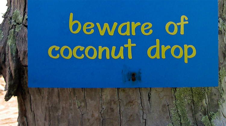 Beware of coconut bord op Koh Kood in Thailand