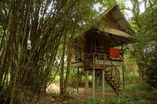 833-thailand-hut-khao-sok-valley-lodge